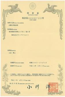 特許取得済 特許第3668722号